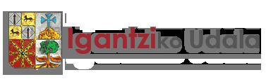 Ayuntamiento de Igantzi